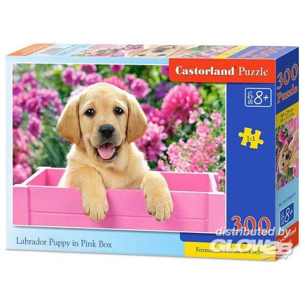 Labrador chiot dans la boîte rose Puzzle 300 pièces