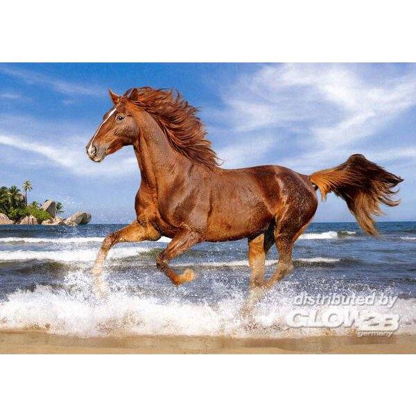 Horse on the Beach, Puzzle 500 pièces Puzzle 500 pièces