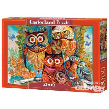 Puzzle Owls, Puzzle 2000 parties