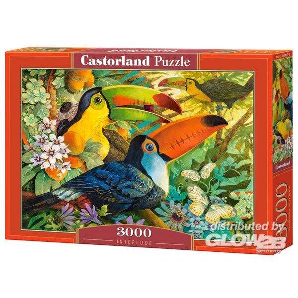 Toucans dans les arbres Puzzle 3000 pièces