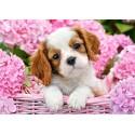 Puzzle Chiot en fleurs roses Castorland B-52233
