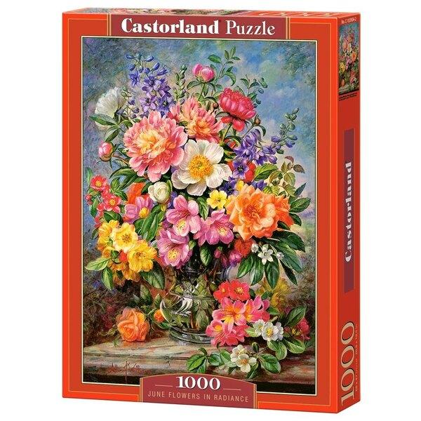 Fleurs de juin dans Radiance Puzzle 1000 pièces