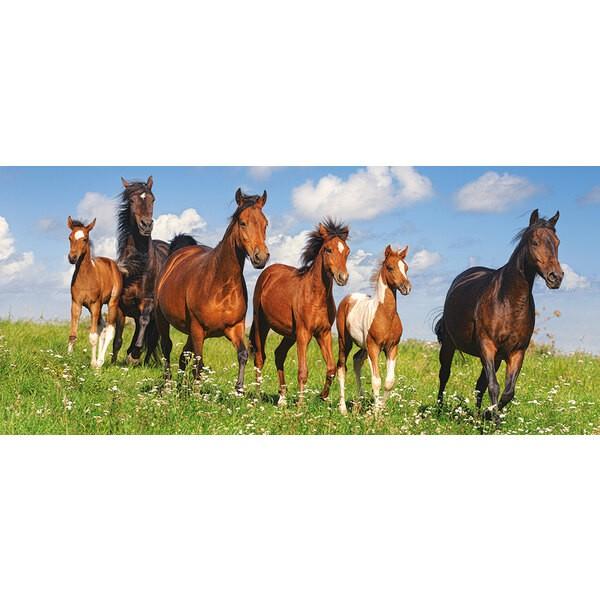 Paradis des chevaux Puzzle 600 pièces