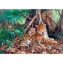 Puzzle Jaguars dans la jungle Castorland C-300280-2