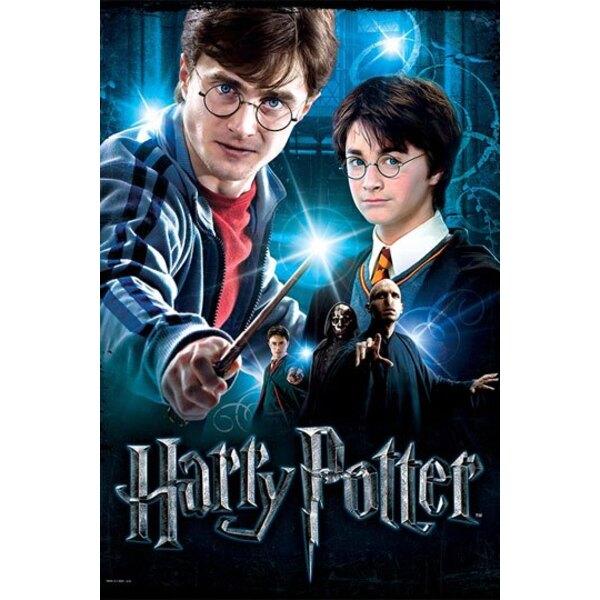 Harry Potter Poster Puzzle Harry Potter Puzzle 500 pièces