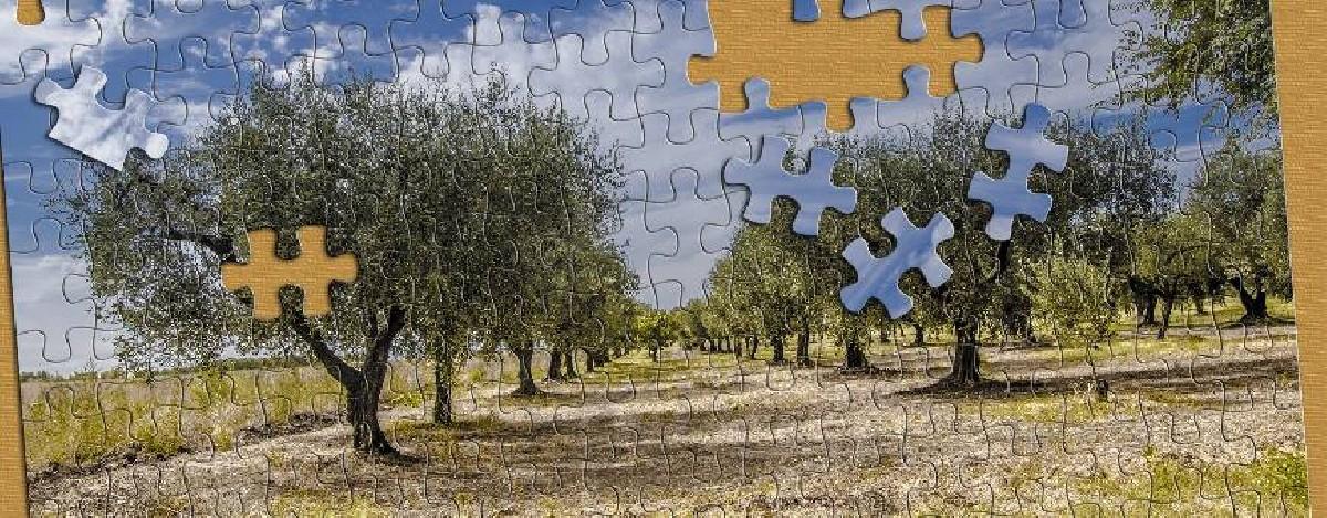 Puzzle nature - tous les puzzles avec 1001puzzles