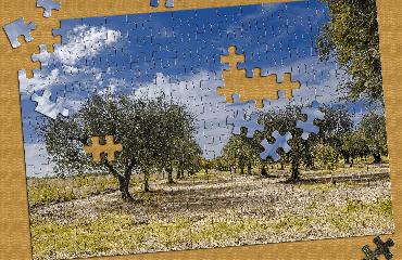 Puzzles Naturlandschaften